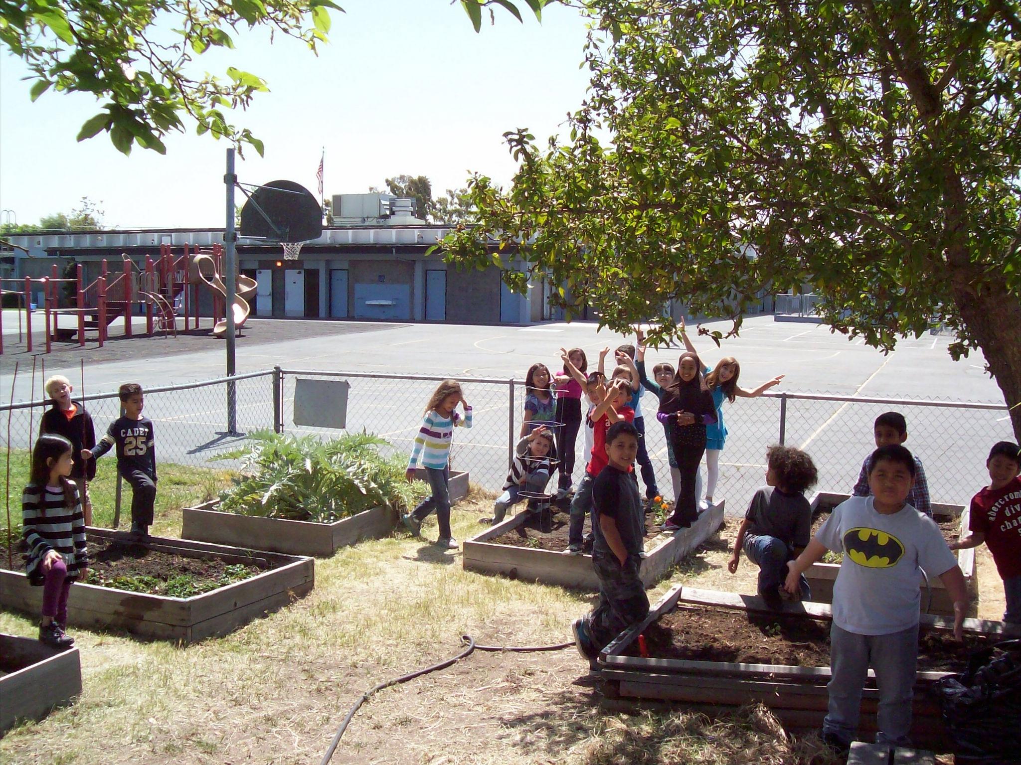 Hickman Elementary Garden Spring Planting Tunetrack