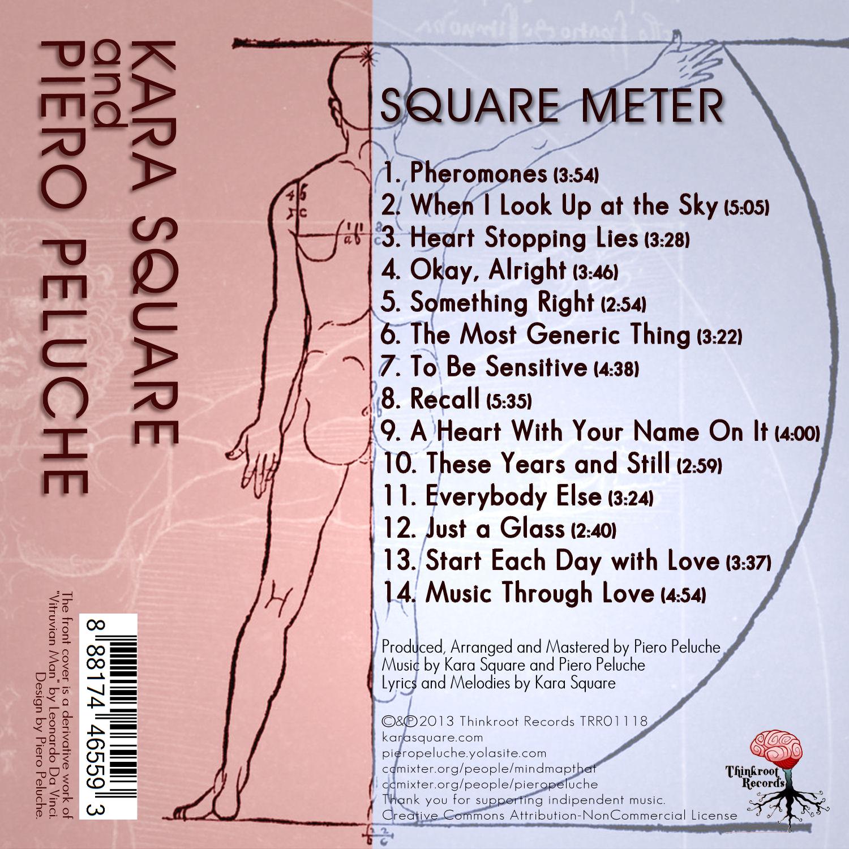 Square Meter Back Cover Art