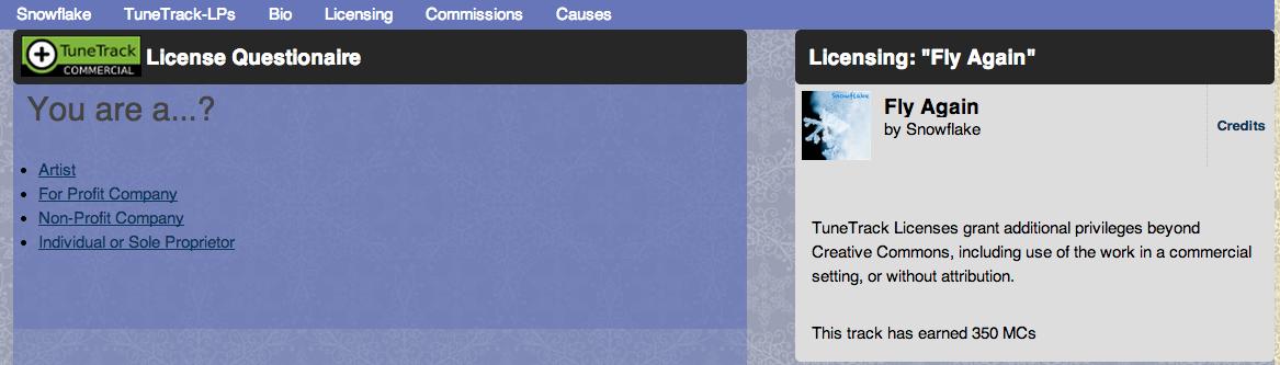 ccPlus License Wizard Example