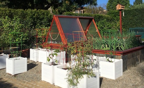 brentwod urban farm