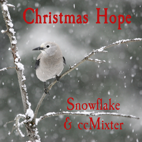 Cover of Snowflake & ccMixter Christmas Hope